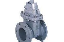 Resilient Seated Gate Valves Model SE-1/SF-1